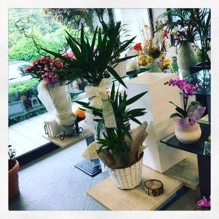 Addobbare casa per un matrimonio idee fiorite - Come addobbare la casa della sposa il giorno del matrimonio ...