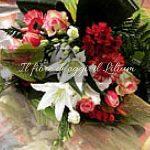 Il fiore di oggi: il Lilium