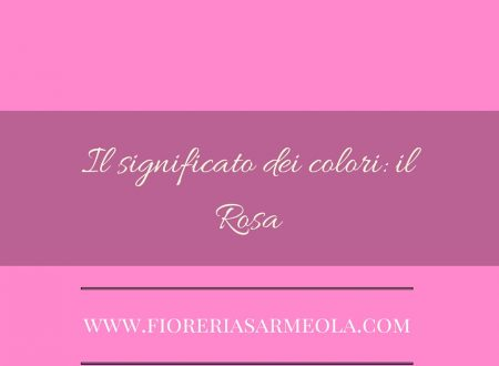 Il significato dei colori: il Rosa