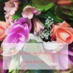 La Curcuma, un fiore non solo una spezia