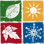 Autunno caldo e le piante soffrono