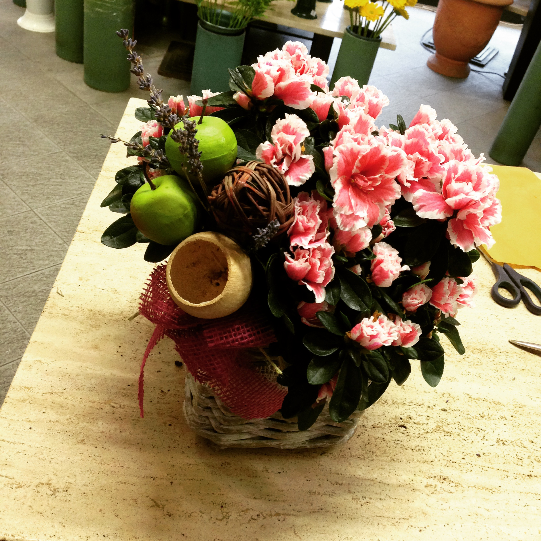 L 39 azalea una pianta fiorita da regalo for Pianta fiorita da esterno