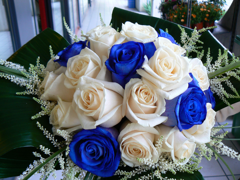 Auguri Matrimonio Greco : Miti e leggende la rosa rossa blu gialla