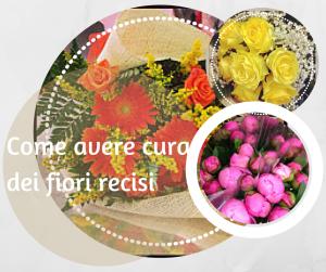 Come avere cura dei fiori recisi