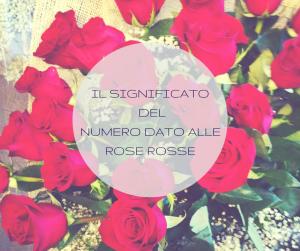 Il significato dei numero dato alle rose rosse