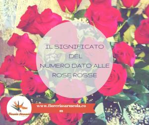 Il significato dei numeri dato alle rose rosse
