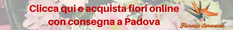 consegnamo fiori a Padova