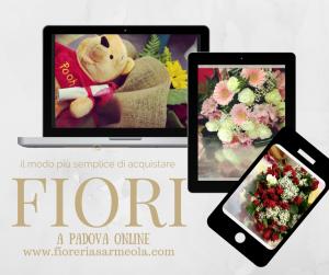 Offerte online di fiori a Padova online