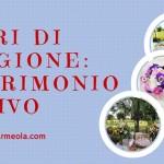 Fiori di stagione: Matrimonio estivo