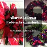 Alloro e Laurea a Padova: la vera storia
