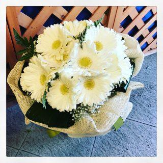 Bouquet di gerbere bianche
