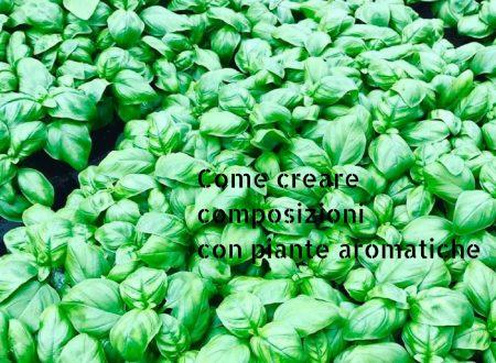Come creare composizioni con piante aromatiche