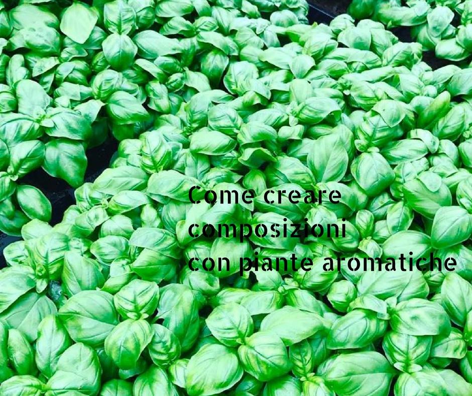 Come creare composizioni con piante aromatiche for Pianta con la i