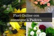 Fiori Online con consegne a Padova