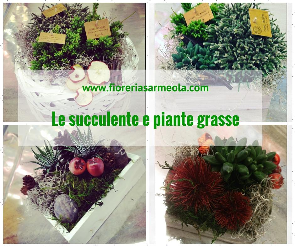 Le succulente e piante grasse for Piante grasse succulente