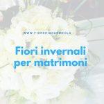 Fiori invernali per matrimoni