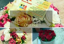 Fiori a Padova Online