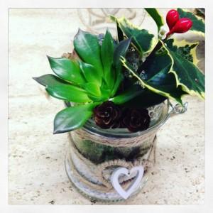 composizione con succulente e agrifoglio