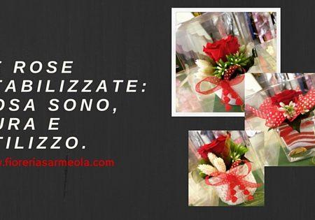 Le rose stabilizzate: cosa sono, cura e utilizzo.