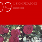 Il significato di 9 rose rosse