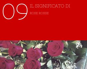 SIGNIFICATO 9 ROSE ROSSE