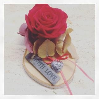 rosa stabilizzata San Valentino