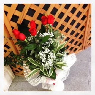 7 rose rosse a Padova