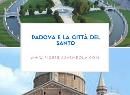 Come visitare Padova e il Santo