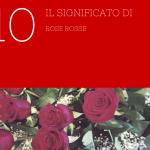 Il significato di 10 rose rosse