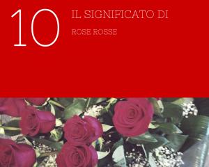 significato 10 rose rosse