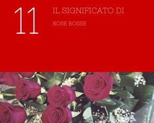 11 rose rosse significato