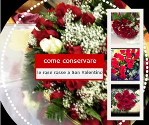 conservare le rose