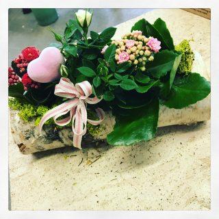 Composizione su tronco di legno con calanchoe e rose