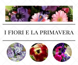 i fiori e la primavera