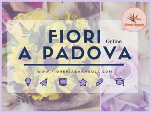 Fiori Padova online