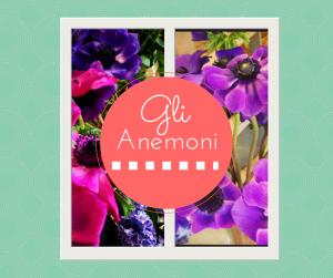 gli anemoni