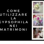 Come utilizzare la gypsophila nei matrimoni