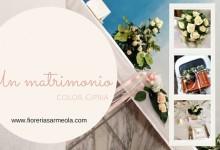 Matrimonio color rosa cipria