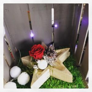 rose stabilizzate Natale