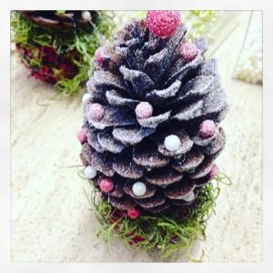 pigna abete di Natale