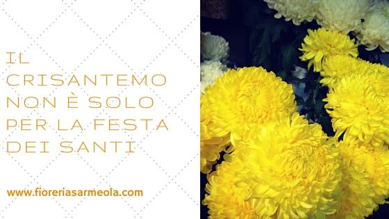 https://fioreriasarmeola.altervista.org/wp-content/uploads/2015/11/Il-crisantemo-non-è-solo-per-la-Festa-dei-Santi.jpg
