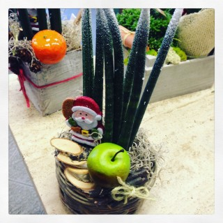 augurare buon Natale con piante