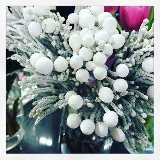 fiori invernali e verdi