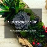 Sughero, piante e fiori