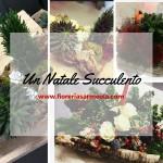 Un Natale Succulento