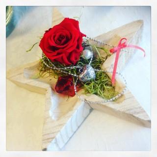 rosa rossa stabilizzata san Valentino