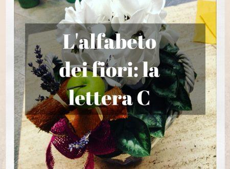 L'alfabeto dei fiori: la lettera C