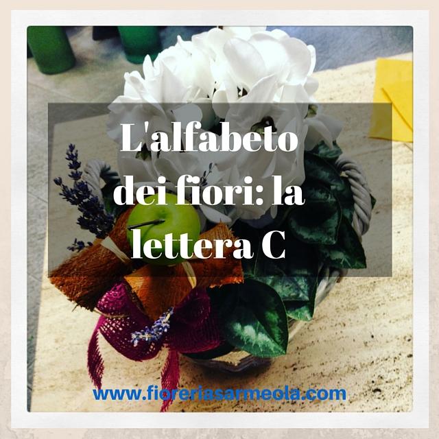 Fiori Con La C.L Alfabeto Dei Fiori La Lettera C
