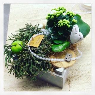 composizione piante Shabby Chic