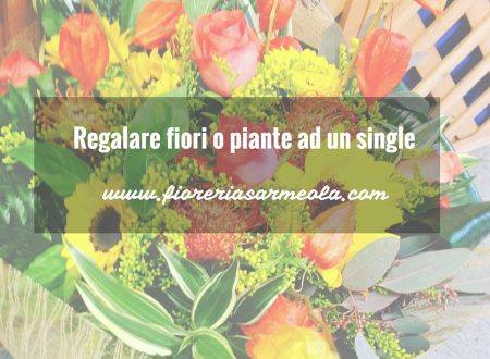 Regalare fiori o piante ad un single